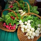 radishes and turnips